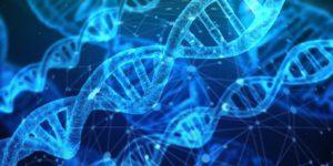 論文導讀:機器學習與基因演算法選股