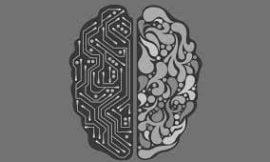 Machine Learning 表示:看季線最無用!
